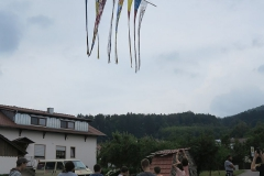 2018-07-06-kuenstler-peter-lang-gleissenberg-033