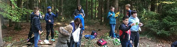 Erster Waldtag für die neuen Schüler der Klee-Klasse